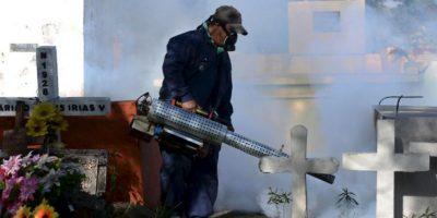 ¿Por qué recomiendan no embarazarse durante la epidemia del virus Zika?