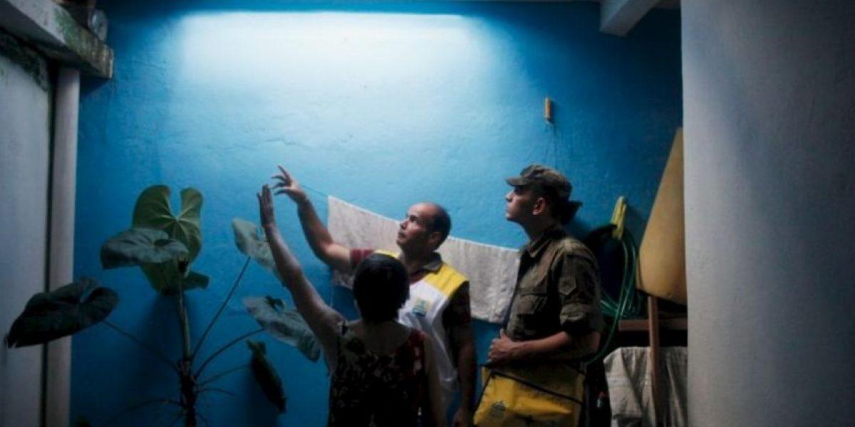 ¿Por qué no se mata a los mosquitos que transmiten el zika?