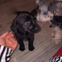 En la imagen se puede observar a Esther y al pequeño Phil. Foto:Vía Instagram/@justinbieber