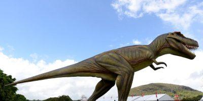 Fue uno de los más grandes dinosaurios carnívoros. Foto:Getty Images