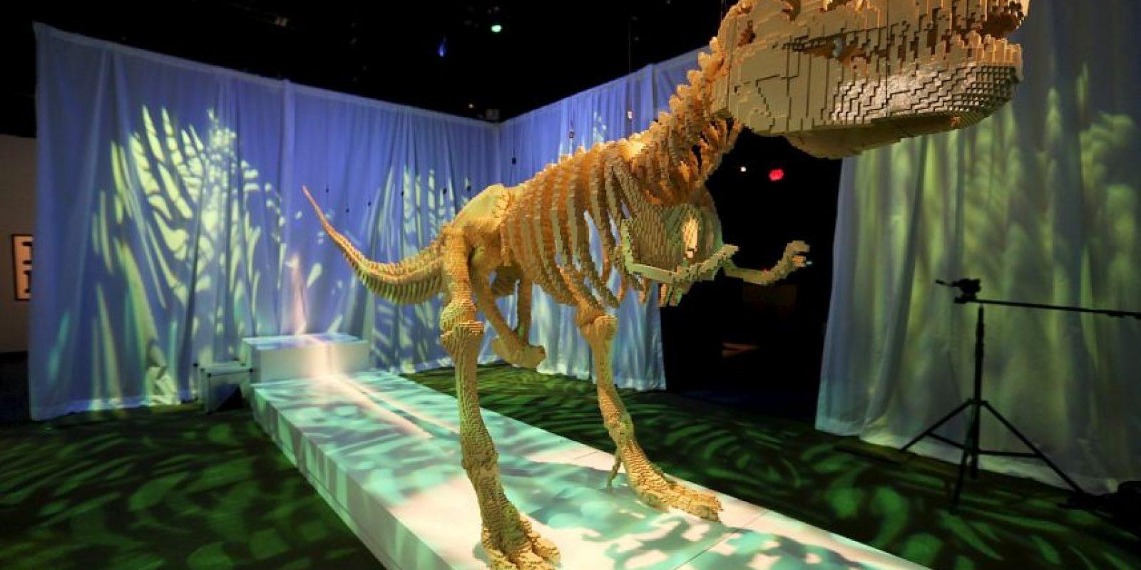 Alcanzaba a medir 13 metros (40 pies) de largo y uno 4 a 6 metros (15 a 20 pies) de altura. Foto:Getty Images