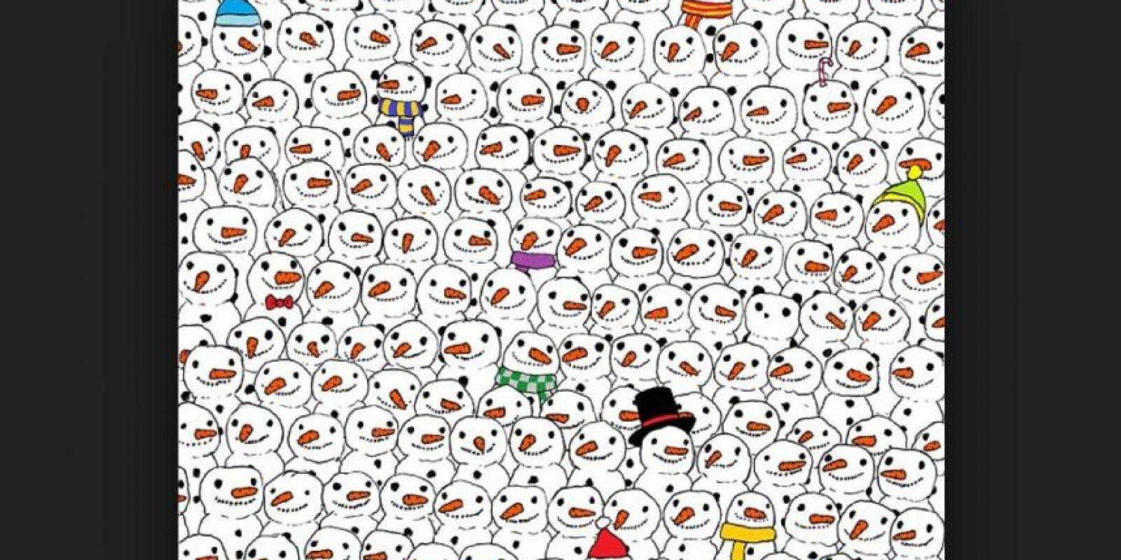 Logran ver otro panda Foto:Vía Twitter