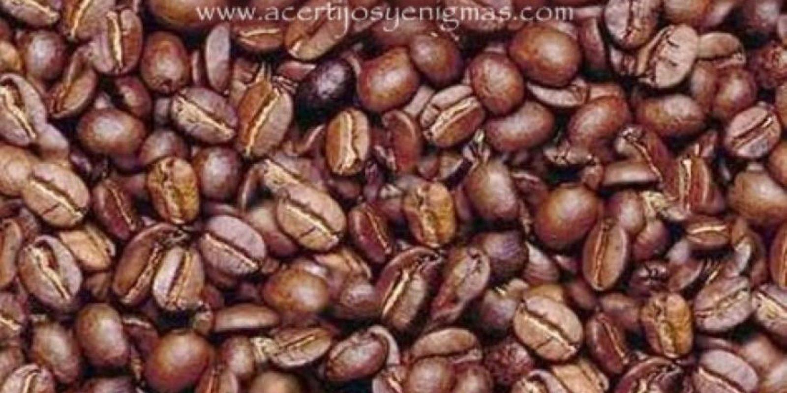Ven al hombre oculto entre los granos de café Foto:acertijosyenigmas.com