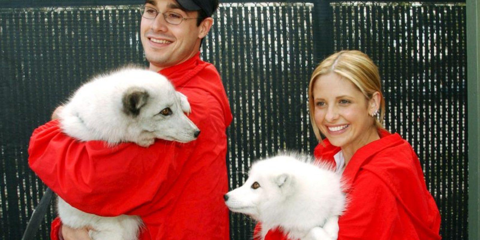 Sarah Michelle Gellar y Freddie Prinze Jr. Foto:Getty Images