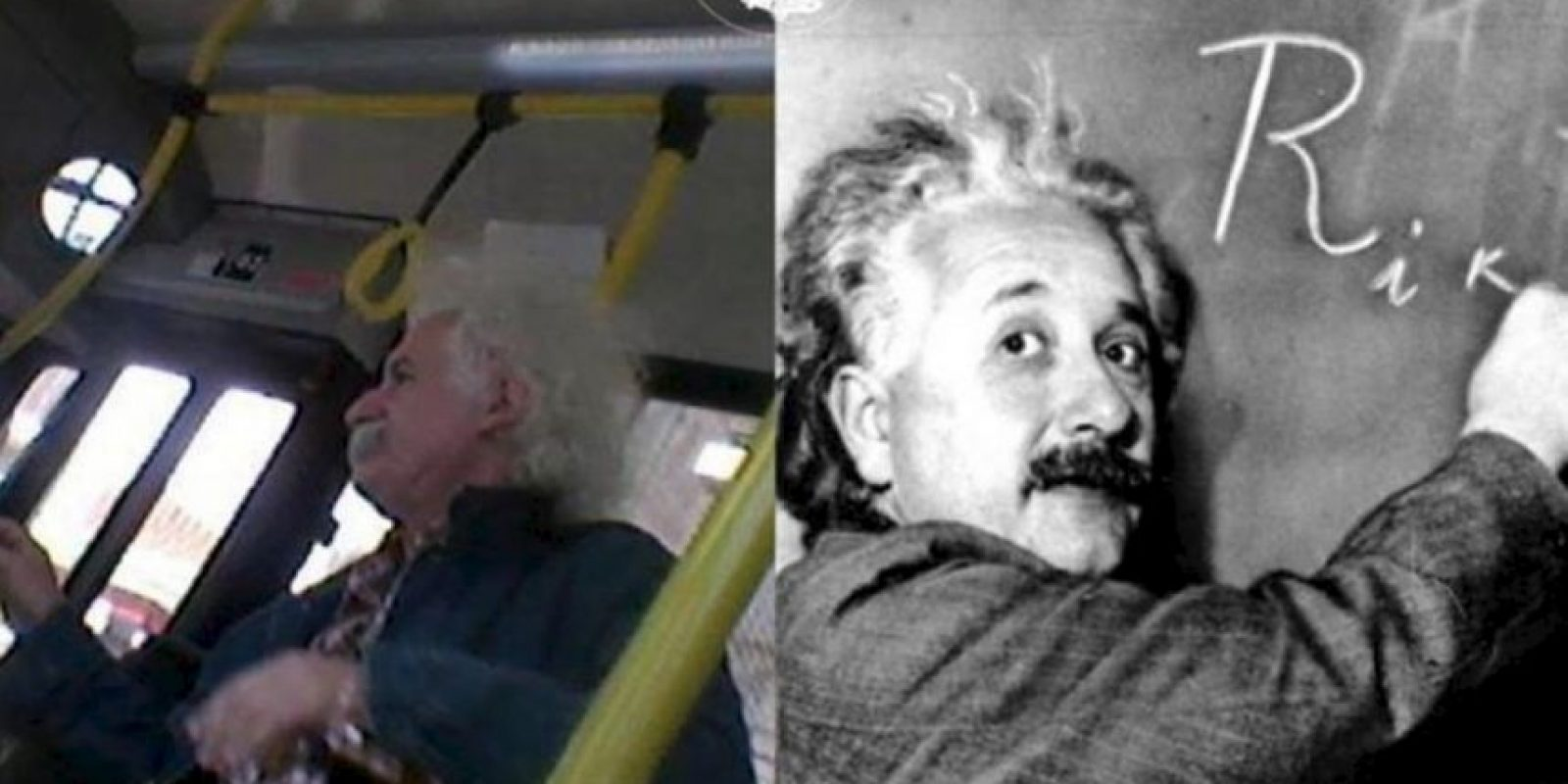 Einstein. Foto:vía Facebook/ Parecidos de Bondis