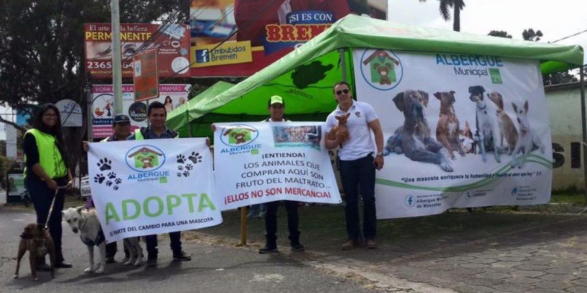 Gracias a Taquito, en las Charcas cambiaron las ventas por las adopciones