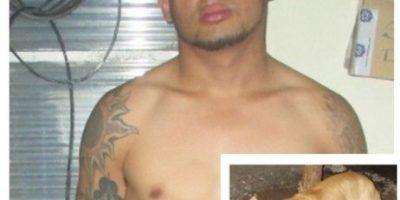 """Detenido por """"organizar"""" pelea de perros en Jalapa"""