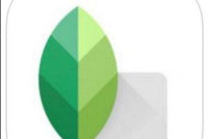 3- Snapseed. Foto:Google, Inc.