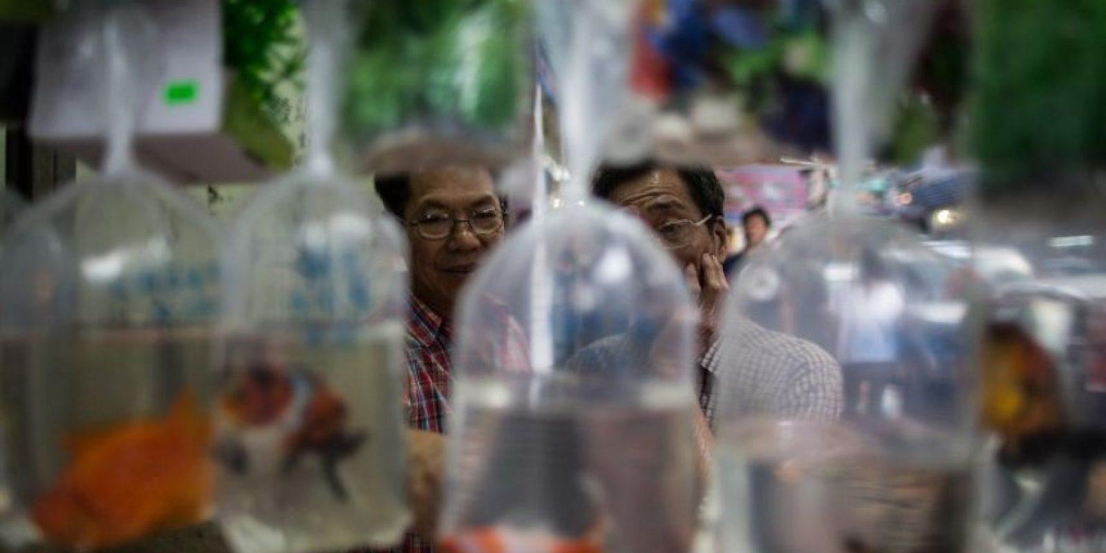 Personas compran peces en un mercado de Hong Kong. Foto:AFP