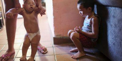 Actualmente no se ha demostrado que el virus Zika sea mortal, pero ya es considerado una emergencia sanitaria mundial, de acuerdo con la Organización Mundial de la Salud Foto:Getty Images