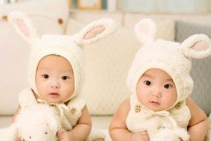 Esa es la razón por la que los gemelos comparten el mismo sexo. Foto:Vía Pixabay