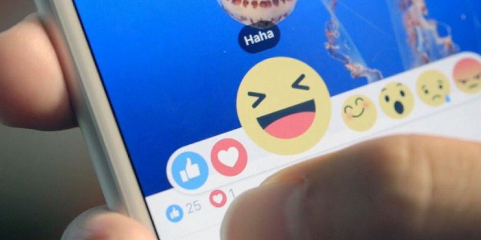 Facebook lanzó mundialmente sus iconos de reacciones. Foto:Twitter