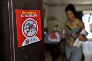 Personas advierten sobre el mosquito Aedes Aegypti, transmisor de enfermedades. Foto:AFP
