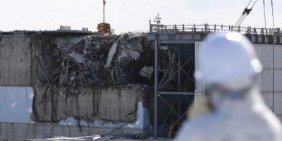 La pesca en Japón se vio afectada tras el desastre nuclear de 2011. Foto:AFP
