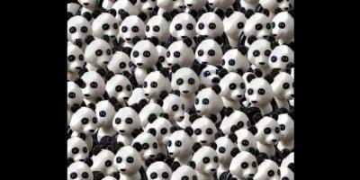 Un perro se esconde entre estos pandas. Foto:Vía Twitter.com