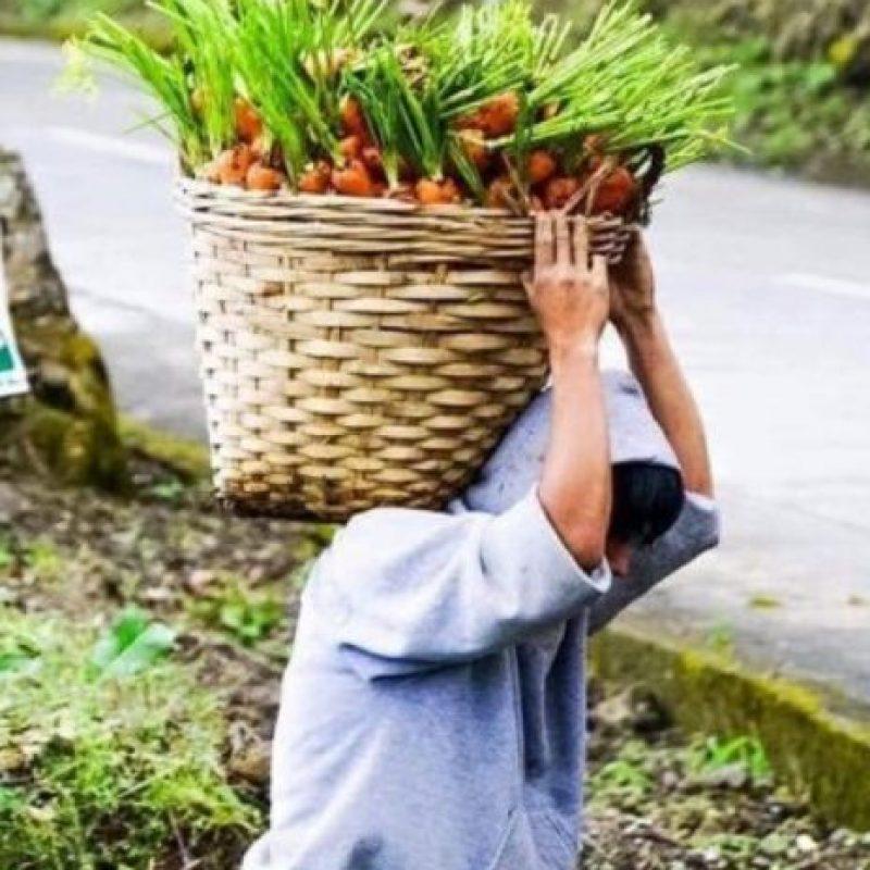 Carrot Man, el joven agricultor anónimo cuyas fotos se hicieron virales. Foto:vía Twitter