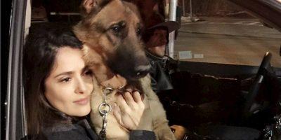 La acompañaba, incluso en el rodaje de películas y series. Foto:vía instagram.com/salmahayek