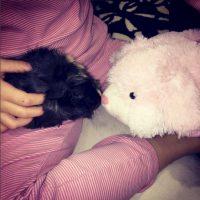 Este otro roedor… Foto:vía instagram.com/salmahayek