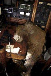 El cuerpo de un turista fue encontrado en un yate Foto:Facebook.com/barobo.policestation