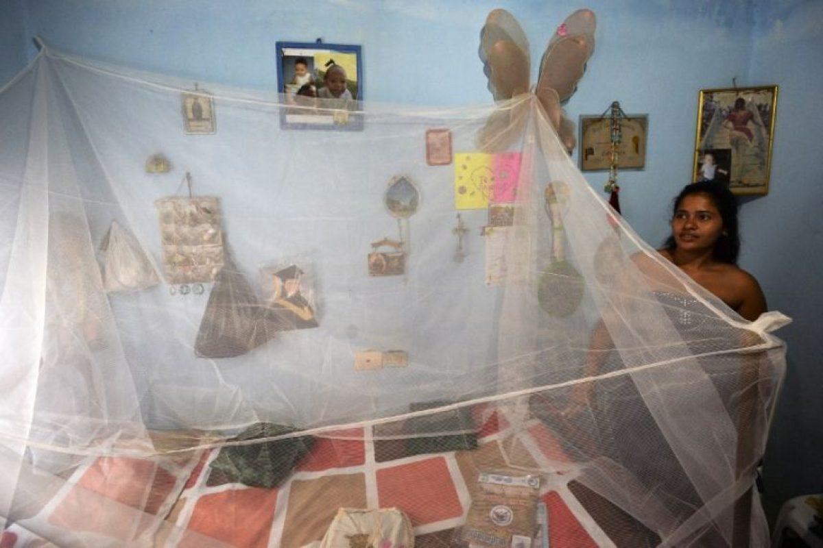 Por el momento los distintos países en riesgo atacan al mosco con insecticidas. Foto:AFP