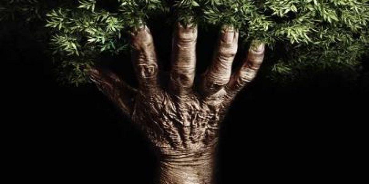 """Día Mundial de la Naturaleza, """"la tierra será un mejor lugar para vivir"""""""