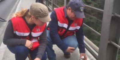 Instalan 12 acelerómetros y sensores para estudios del puente de Belice