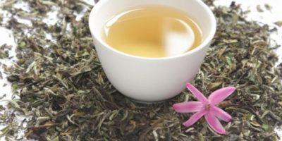 Té blanco. Curiosamente también viene de las hojas de Camellia sinensis Foto:TwitterTwitter