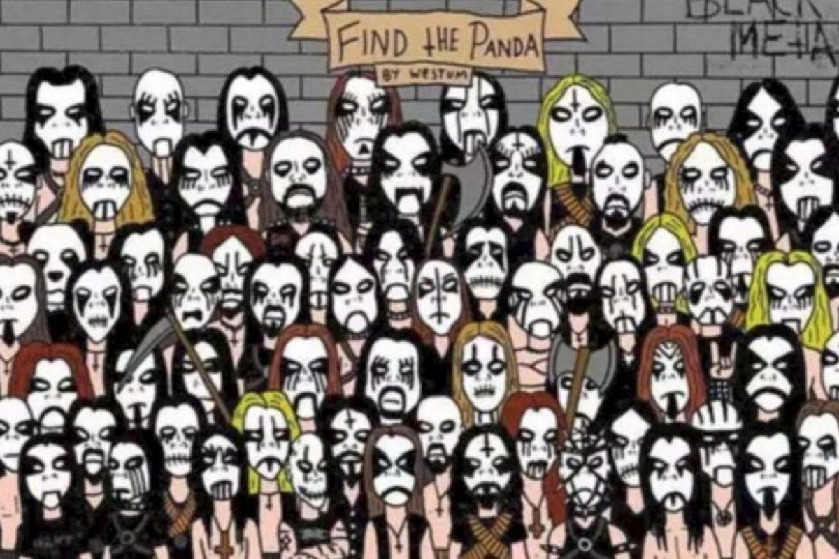 ¿Ya vieron al panda? Foto: Vía Twitter.com