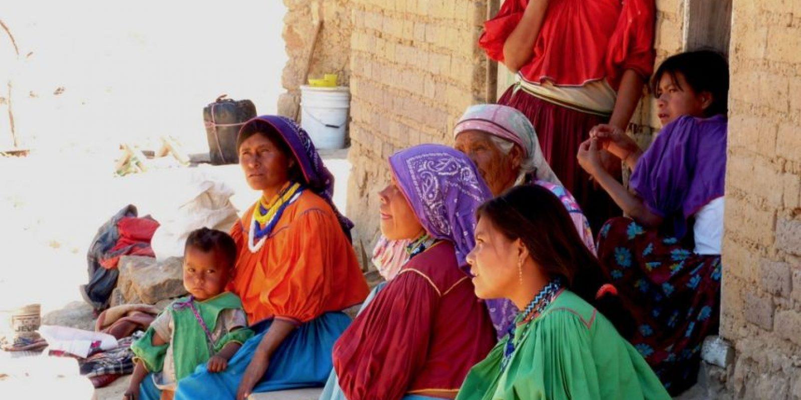 Entre ellos está el grupo de los choles. Foto:Wikipedia.org