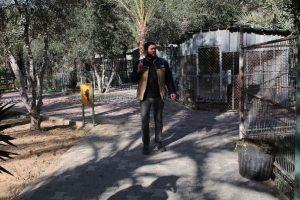 Muchas de las jaulas ya fueron abandonadas Foto:AFP