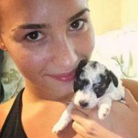 Demi Lovato Foto:Grosby Group