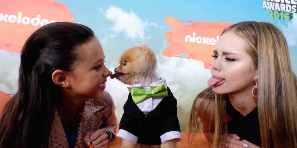 El perrito Jiff fue la sensación en los Kids' Choice Awards 2016
