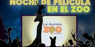 """Detalles de """"Noche de película en el Zoo"""" 2016"""
