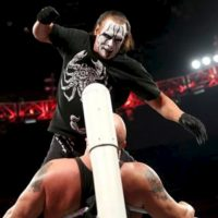 Tiene 15 campeonatos del mundo. Foto:WWE