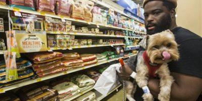 Estadounidenses gastan más que nunca en sus mascotas y esta es la razón
