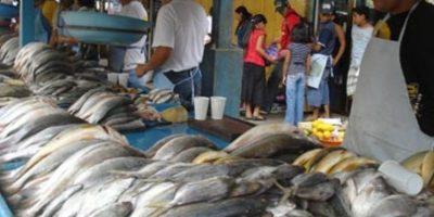 Diaco informa sobre precios promedios de mariscos para esta Semana Santa