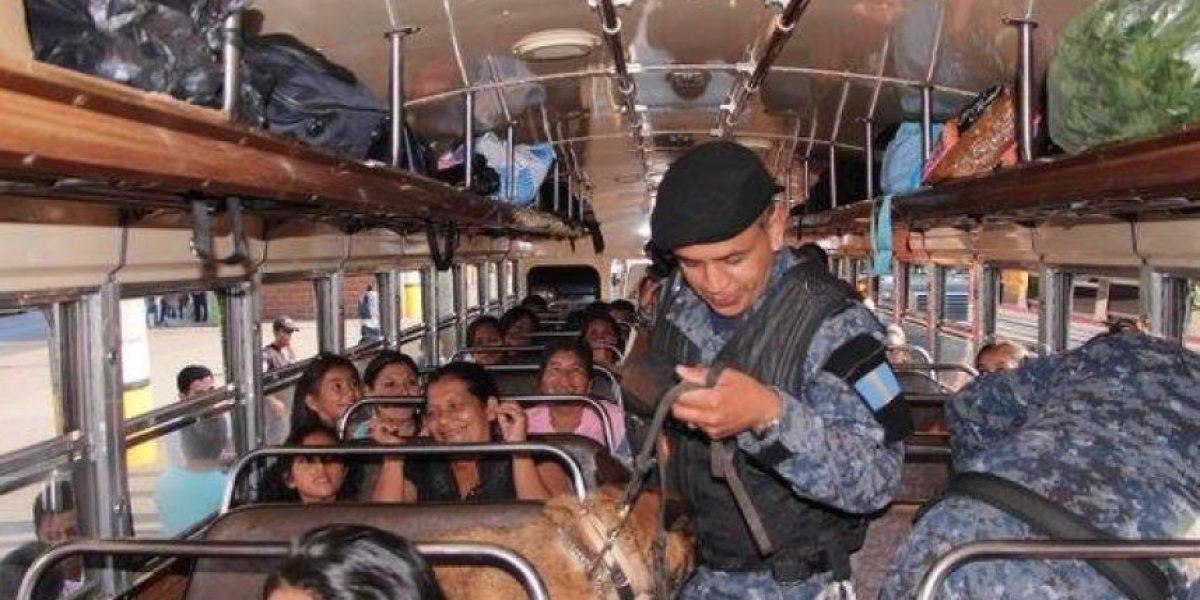 Policía busca bombas en autobuses, tanto en terminales como en carreteras