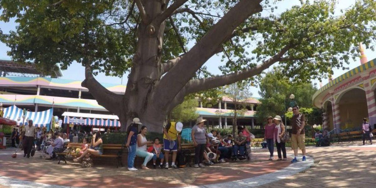Personas acuden a balnearios y centros turísticos en este verano