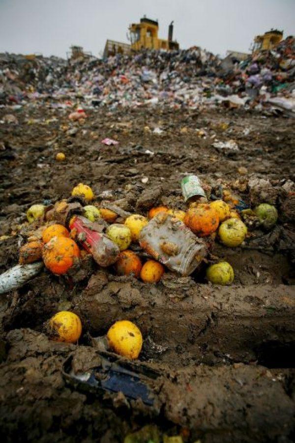 Desde la producción agrícola inicial hasta el consumo final en los hogares. Foto:Getty Images