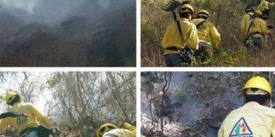 Localizan a bombero forestal que se había perdido en volcán Chingo