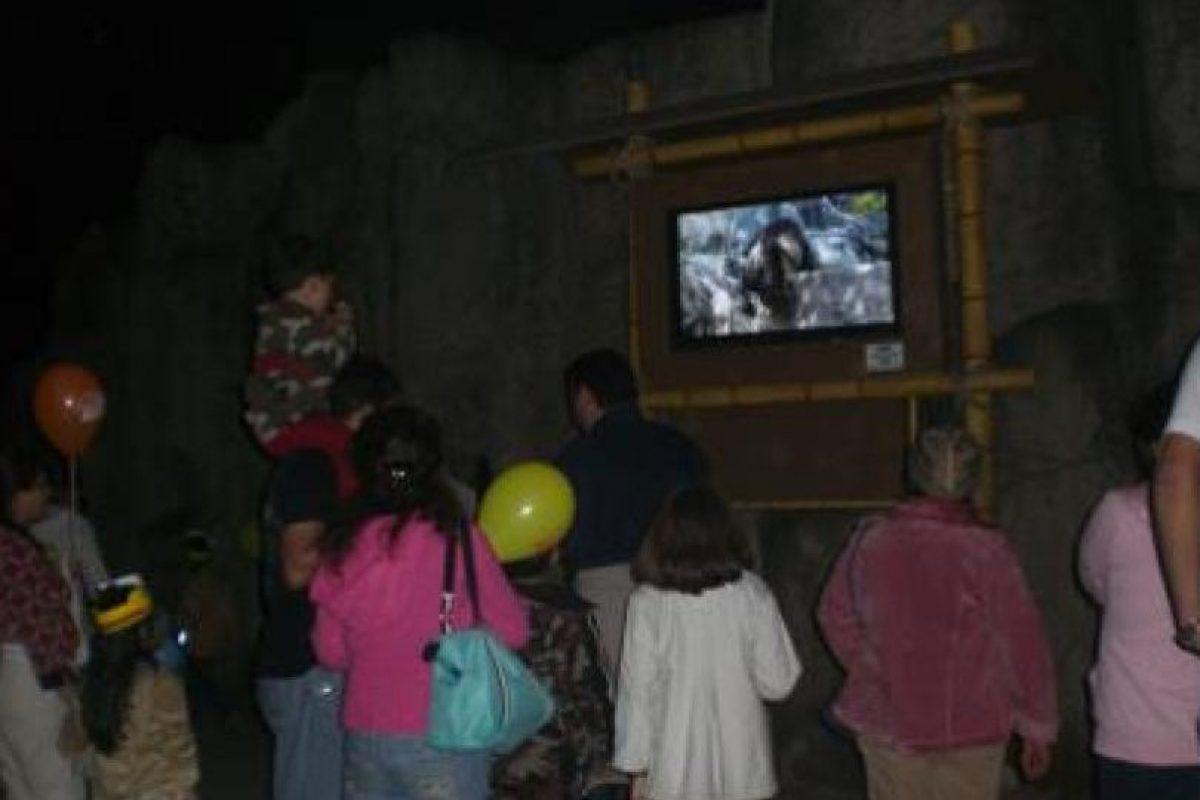 Foto:Zoológico La Aurora