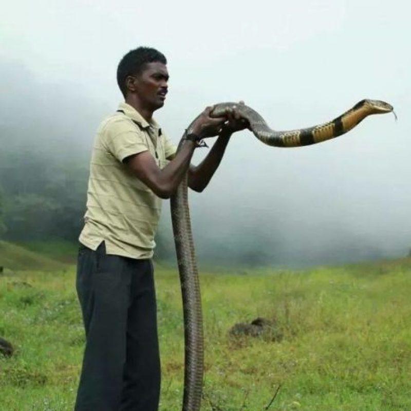 Es un conservacionista indio. Foto:vía Facebook