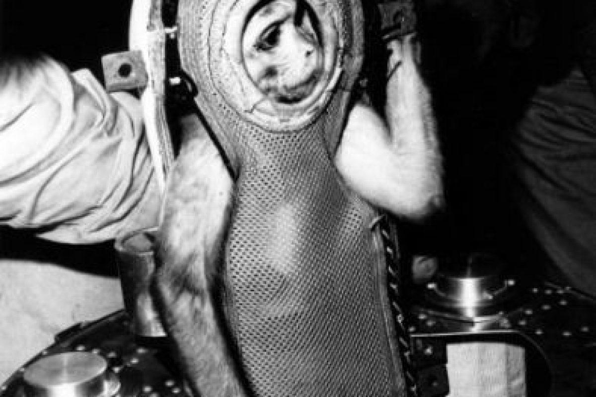 1. No todos los astronautas tienen experiencia como pilotos Foto: Getty Images