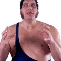 André The Giant. Murió el 27 de enero de 1993, mismo año en el que fue el primer inducido Foto:WWE