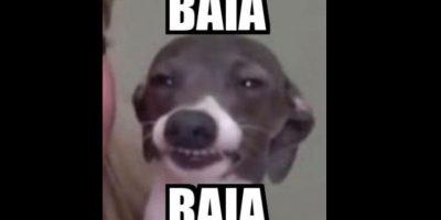 "Pero su ""baia baia"" ha sido transmitido a otros memes. Foto:vía Twitter"