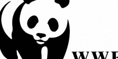 Esta organización tiene alcance mundial y se dedica a detener la degradación del planeta. Foto:WWF