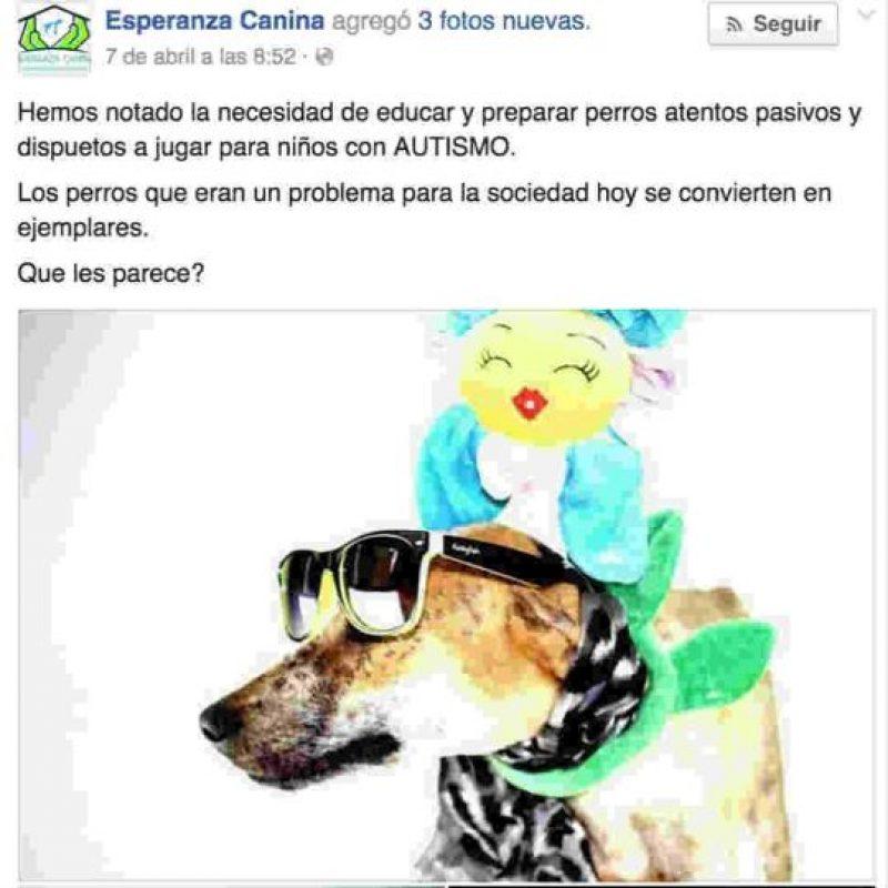 Tratan de ayudar también a niños con autismo. Foto:Facebook