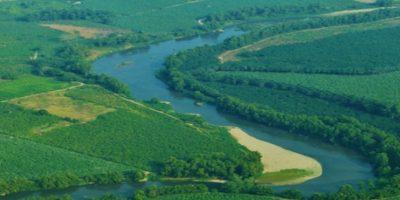Foto:Ministerio de Ambiente y Recursos Naturales