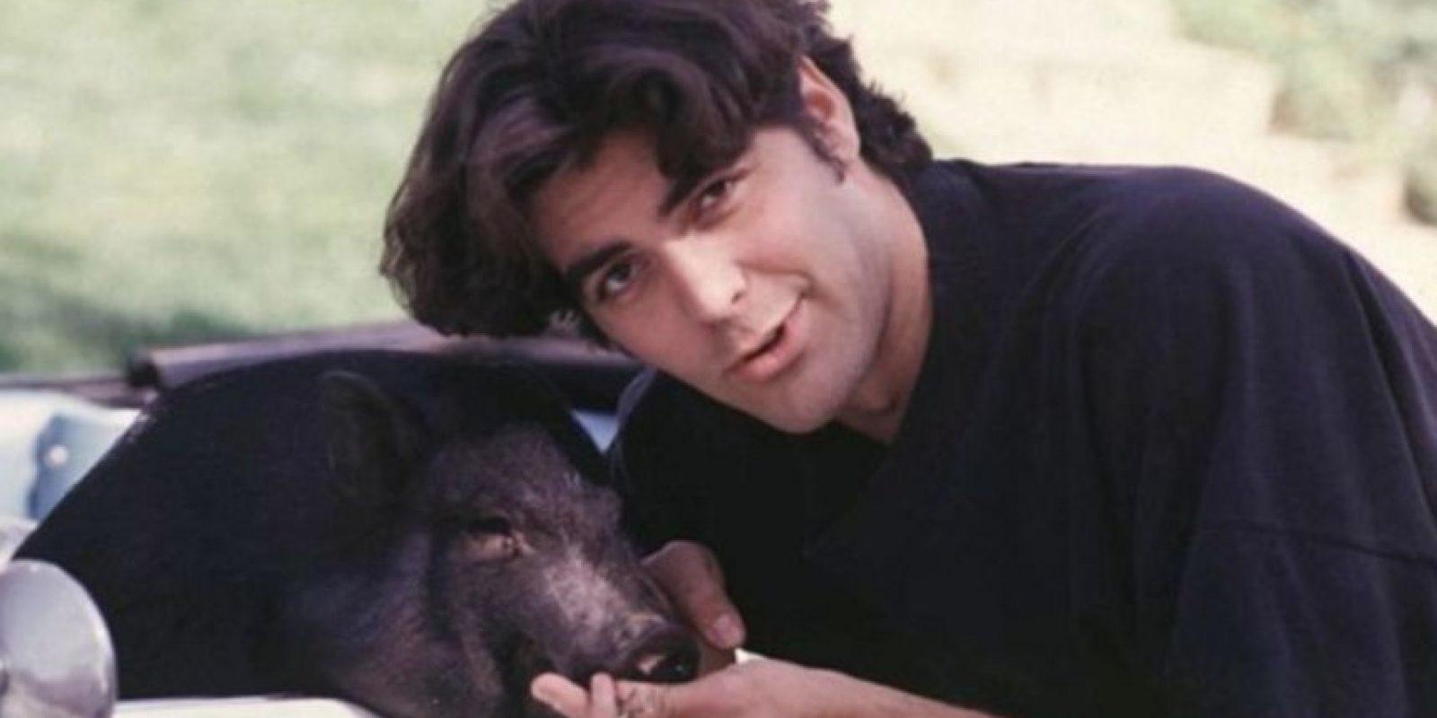 George Clooney y su puerquito Max, quien murió en 2006. Foto:Vía Instagram