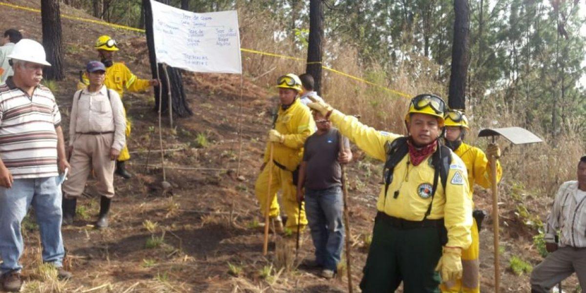 Así se previene un incendio forestal